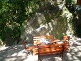 posezení pod dubem, na břehu Lužnice